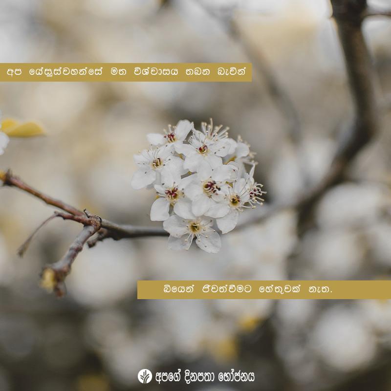 Share ODB 2020-06-05