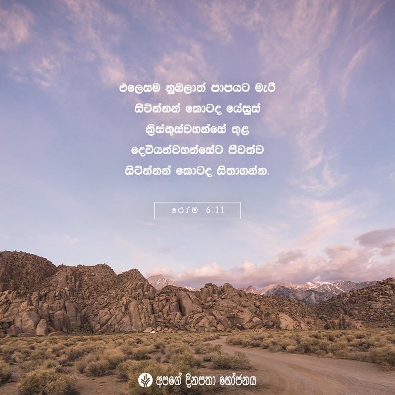 Share ODB 2020-08-03