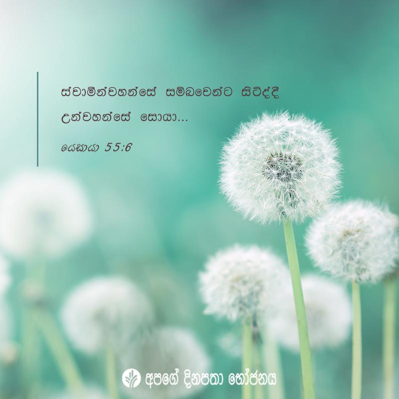 Share ODB 2020-10-18