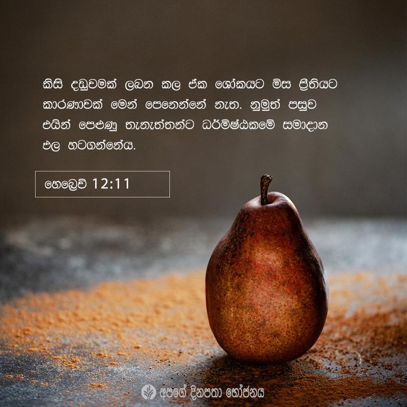 Share ODB 2021-04-27